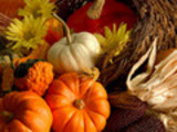 Thumbnail Thanksgiving Articles with PLR